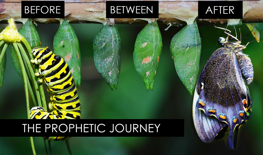 Stages of the Prophetic Journey